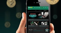 Why Is Dingdong Online Gambling Increasing On Popularity?